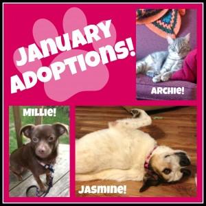2014-1 January Adoptions