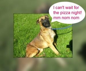 eddie pizza